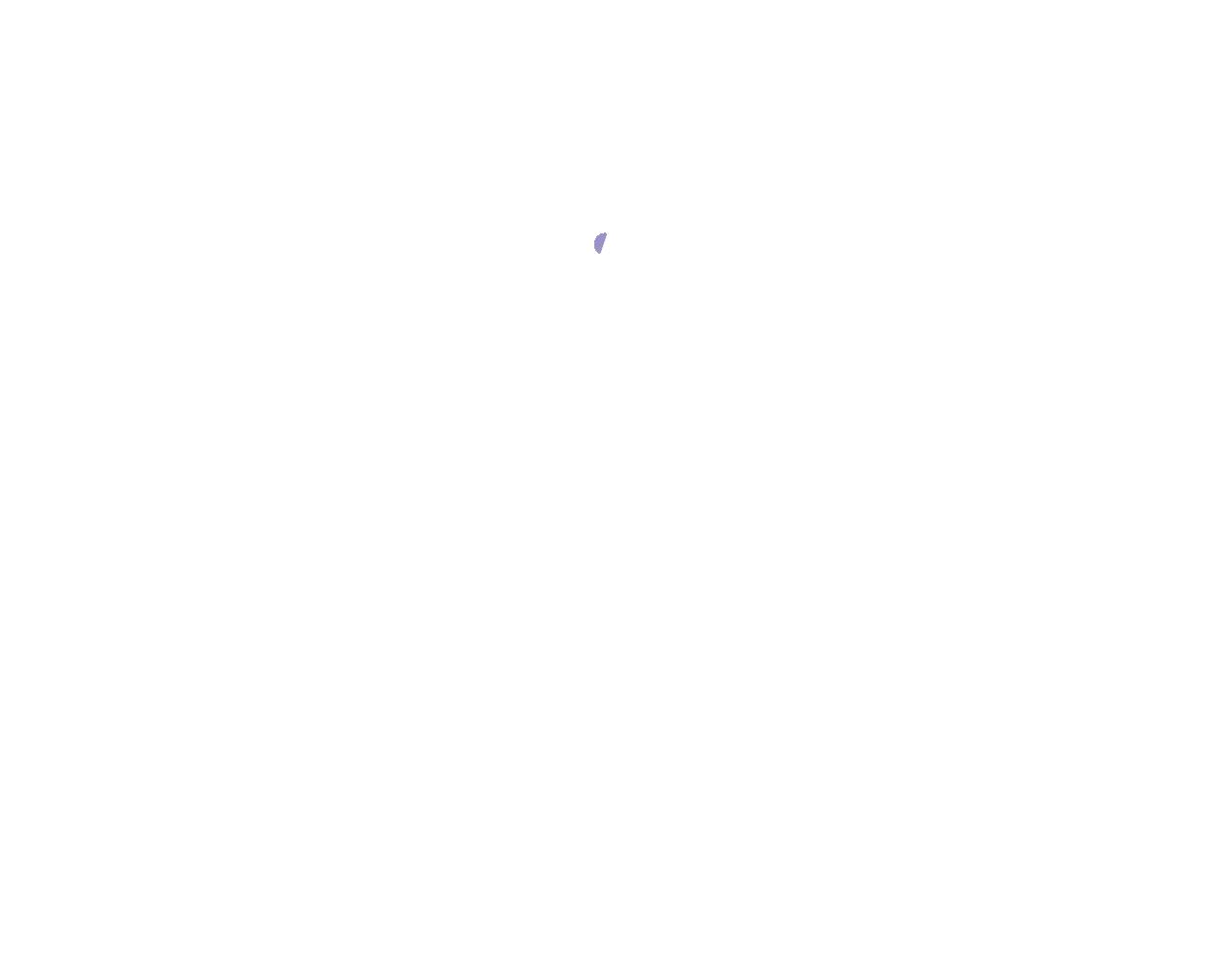 Aloha Stoked Certified