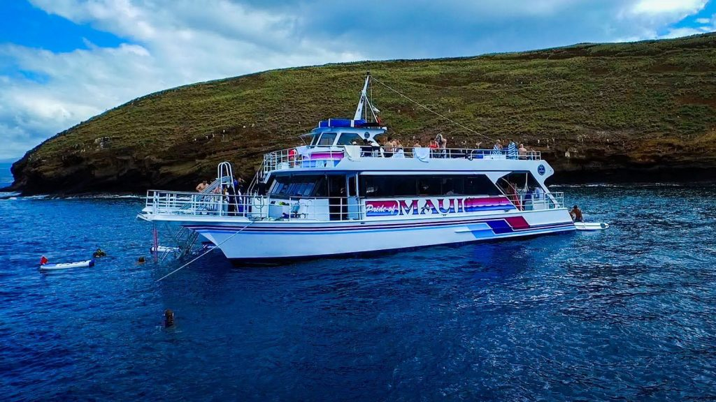 The Pride of Maui tour combines a two­ hour whale watching expedition and snorkeling among beautiful coral gardens.  Image Source