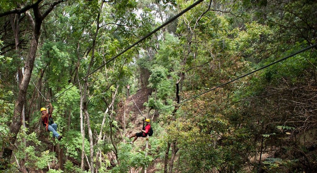 The Piiholo Ranch Zipline company is situated on a cattle ranch at an elevation of 2,000 feet.  Image Source