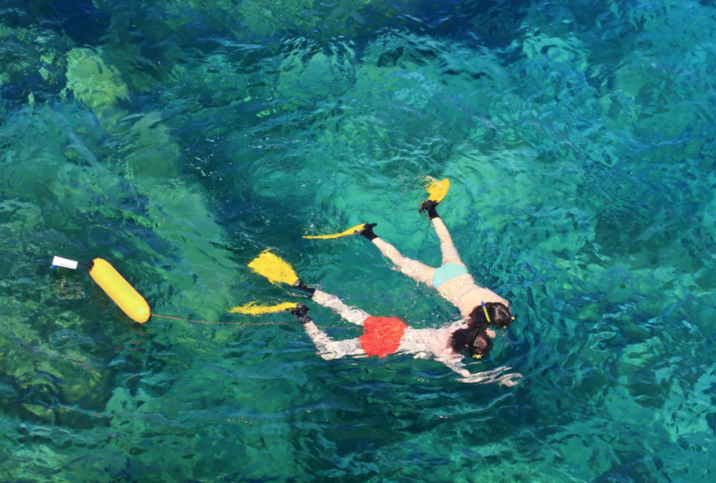 Maui offers an extensive selection of snorkeling beaches for the family to explore.